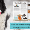 Free Guide Offers Dog Owners Winter Safety Tips